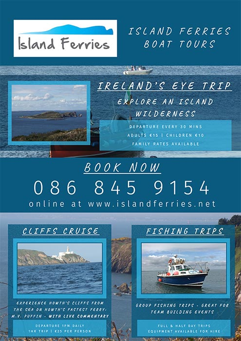 graphic design services dublin rocket chip web solutions island ferries